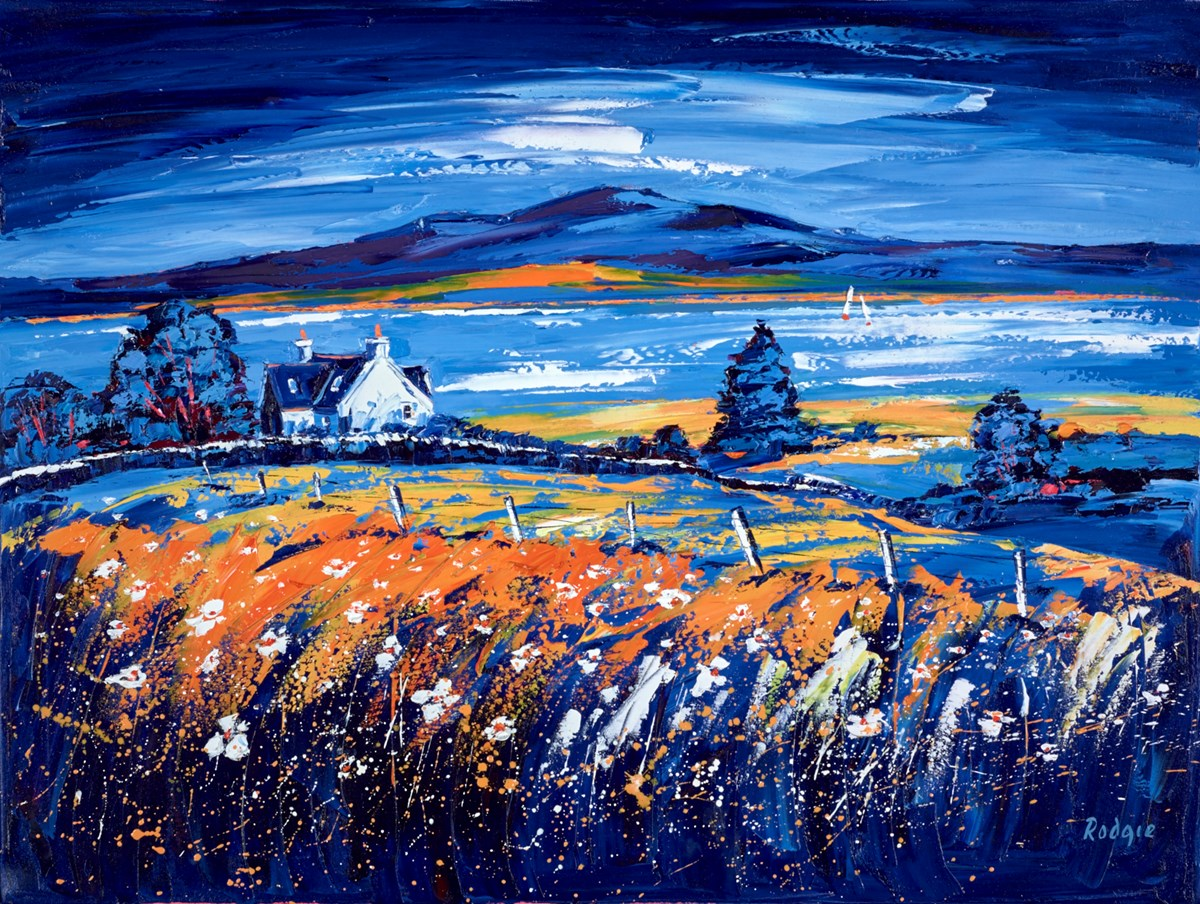 Golden Light by lynn rodgie -  sized 40x30 inches. Available from Whitewall Galleries